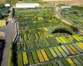 Légi felvételek kertészetünkről